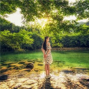 《美女爱旅游》寻找森林仙子