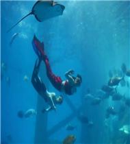 @所有人!鬼混海洋,快乐捣蛋!合肥海洋世界邀你免费游!