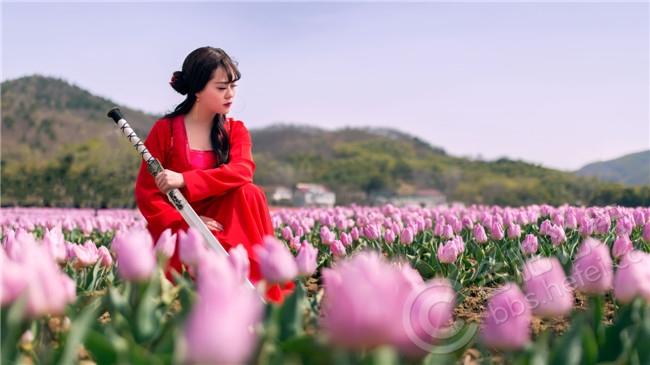 杨朋IMG_3819.jpg