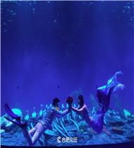 合肥海洋世界群鱼风暴馆震撼推出