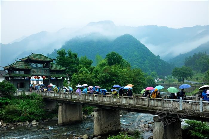 雨中赏景景更幽(作者:程相艺).jpg