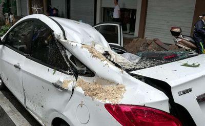 【维权】我的车惹谁了?园林局说天灾不赔偿
